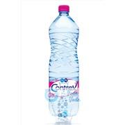 Упаковка минеральной воды Contrex 1,5 в пластике - 12 шт.