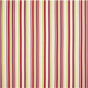 Kids / Candy Stripe Brights Ткань