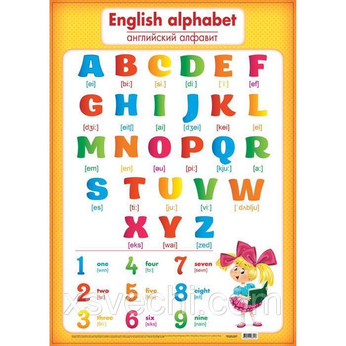 "Обучающий плакат ""Английские алфавит и цифры"" А2"
