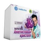 Набор для выращивания кристаллов Intellectico Аметистовый кристалл 505